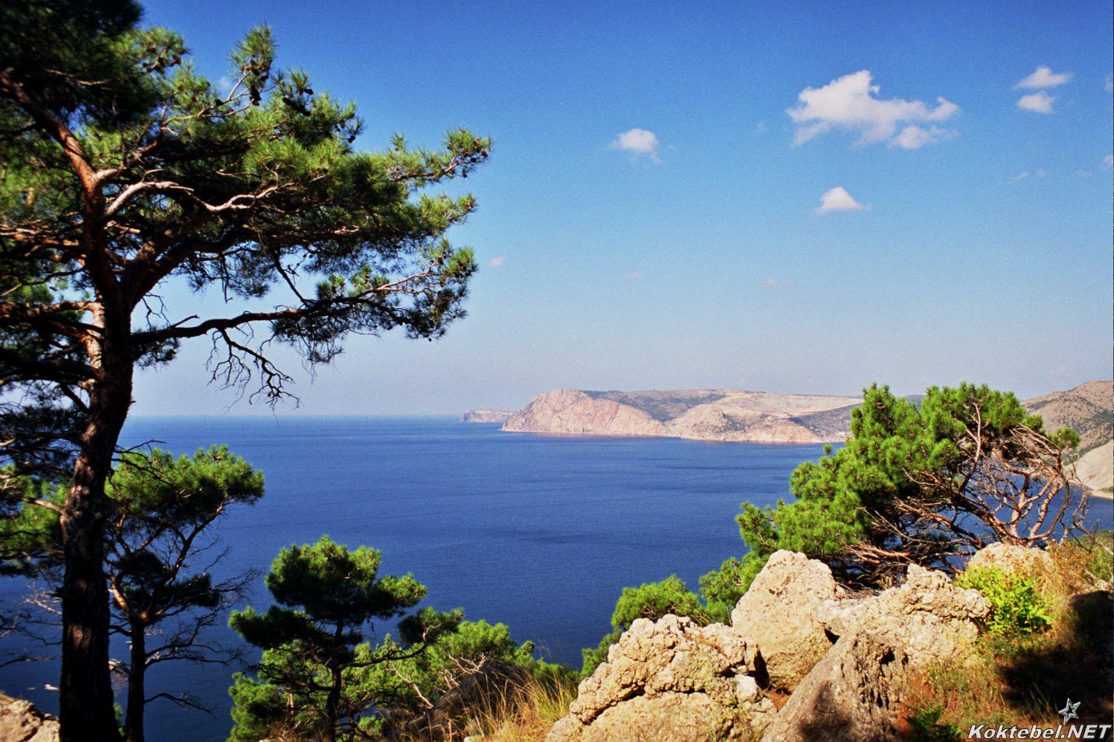 Отдых на крымском полуострове фото 3
